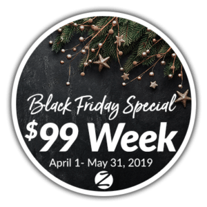 Sarasota Sunny South Black Friday 2018